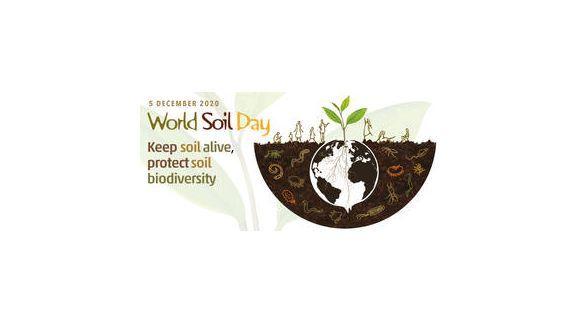 5 decembrie - Ziua Mondială a Solului